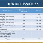 Tiến độ thanh toán dự án Hanoi Homeland